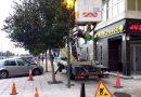 El Ayuntamiento refuerza el alumbrado público en un tramo de la avenida Virgen del Carmen