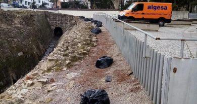 Operarios de ALGESA intensifican las actuaciones de limpieza en las murallas medievales