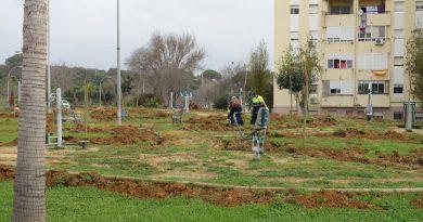 El Ayuntamiento mejorará los jardines de Miraflores y plantará una veintena de árboles en el parque de mayores