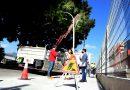 El Ayuntamiento renueva el alumbrado en la rotonda de acceso a la estación de Renfe