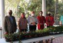 El Ayuntamiento entrega a Ambae plantas para la realización de un taller con niños